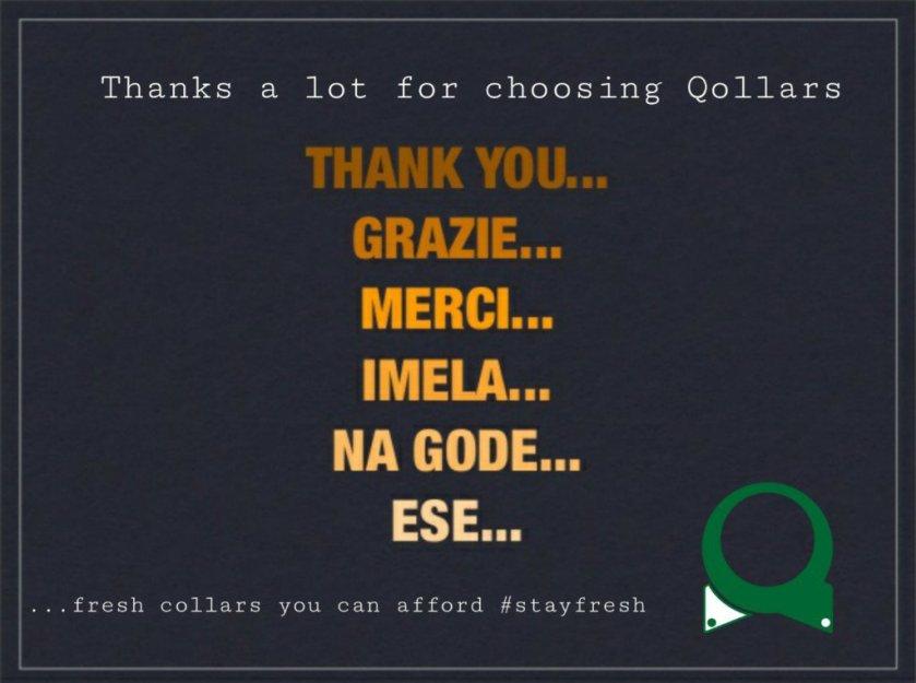 thankyouforchoosingqollars.jpg